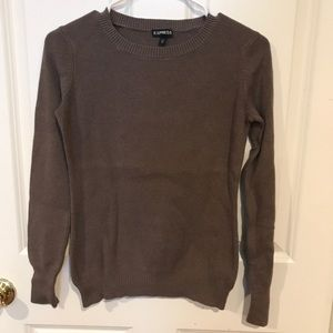 Express Fitted Sweater